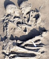 Mantova couple 5000-6000 years old found by Elena Menotti.jpg