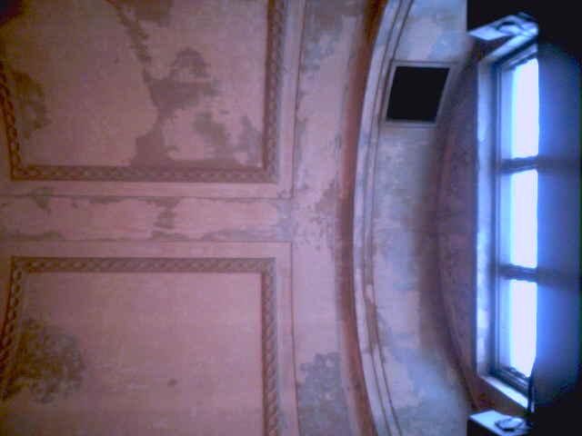 ceilingbraz11.jpg